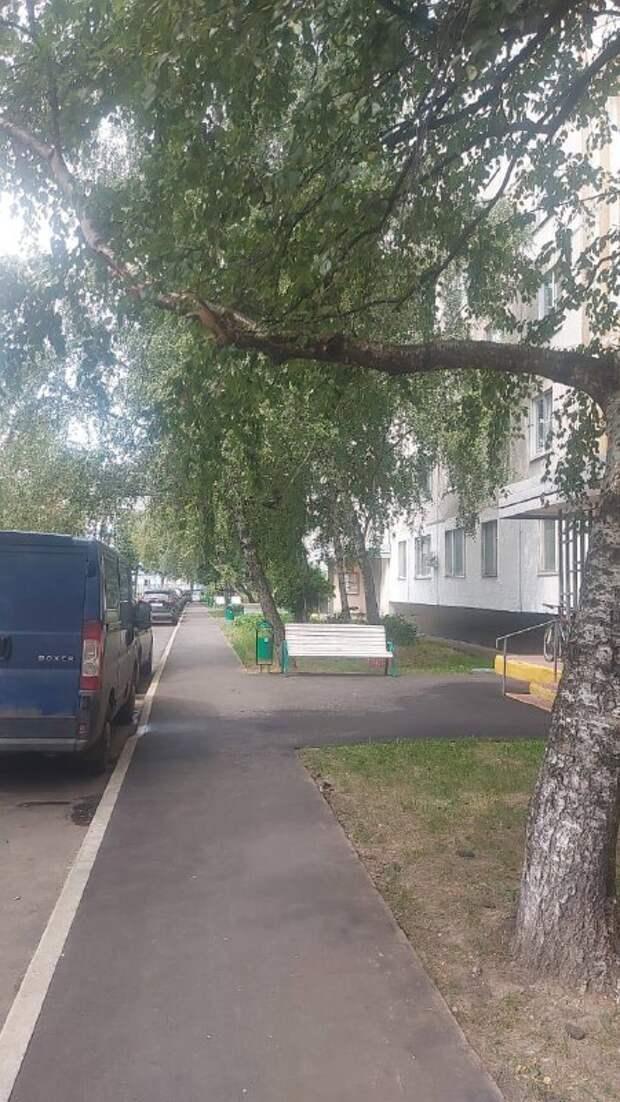 Во дворе дома на Псковской спилили аварийную ветку по просьбам жителей