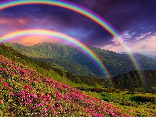 HD wallpaper: Nature landscape, mountains, flowers, rainbow ...