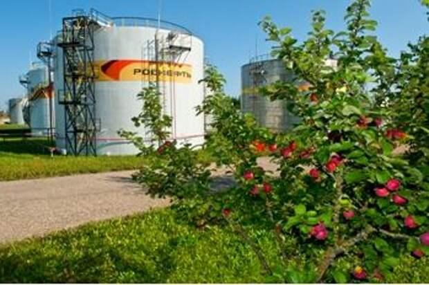 """""""Роснефть"""" намерена сократить интенсивность выбросов в разведке и добыче на 30% к 2035 году"""