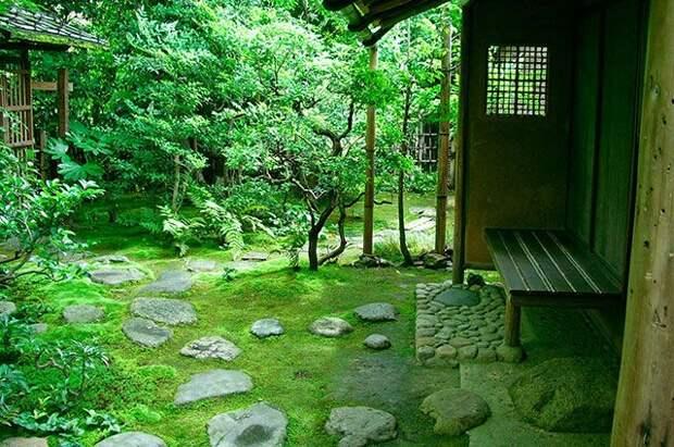 От мха и бамбука до огорода в квартире. 5 тенденций садового дизайна