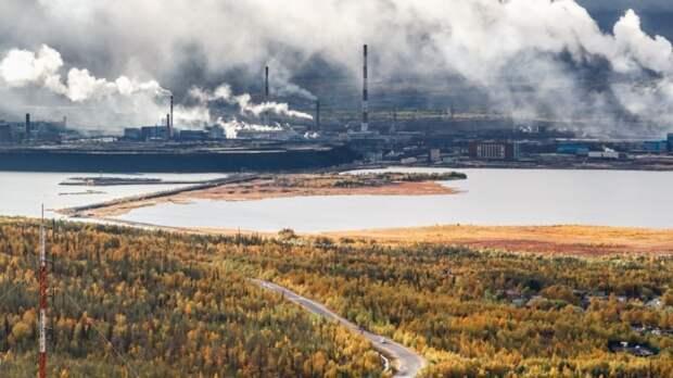Россиянам начали выдавать бесплатные «арктические гектары»
