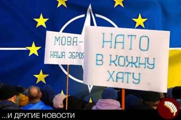 Украина уверена – она заслужила своё место в НАТО