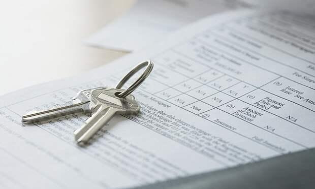 Что стоит проверить владельцу недвижимости в выписке ЕГРН, чтобы избежать проблем