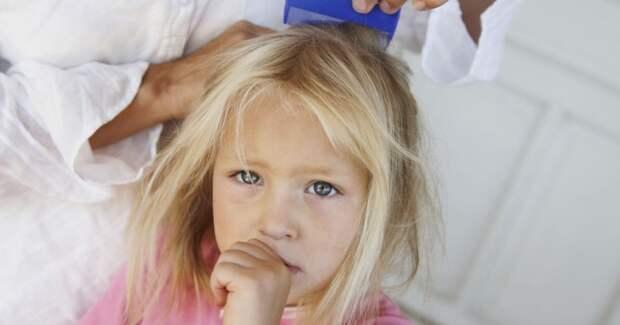 Как избавить ребенка от вшей: секрет, о котором вам не рассказывают врачи