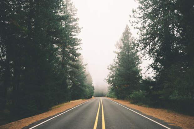 Самая короткая платная дорога станет и самой дорогой
