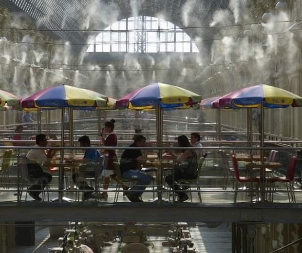 Рестораторы в Москве предложили пускать посетителей без QR-кодов бессрочно хотя бы на веренды
