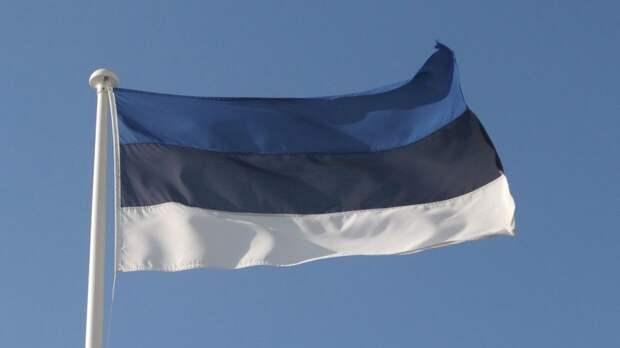 """Солдаты НАТО """"на защите"""" Эстонии калечат себя и местных жителей"""