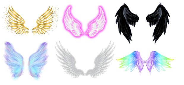 Тест: выберите одну пару крыльев из 6-ти и узнайте, какой Ангел вас посетит в ближайшее время