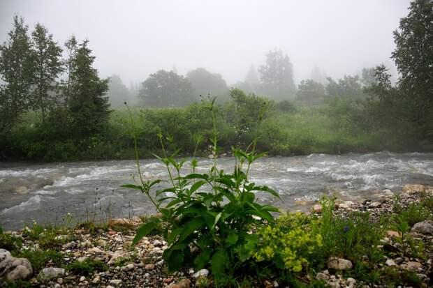 Река белая в верхнем течении