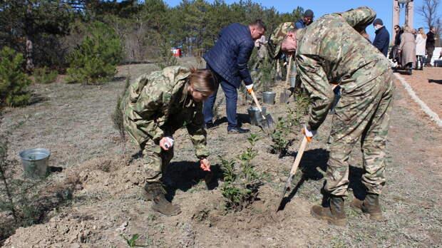 В Крыму высадили 320 деревьев в рамках акции «Сад памяти»