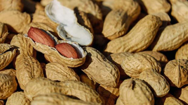 Диетологи рассказали, как жареный арахис влияет на нервную систему