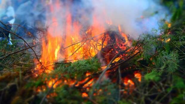 Сухие грозы становятся основной причиной лесных пожаров на севере России