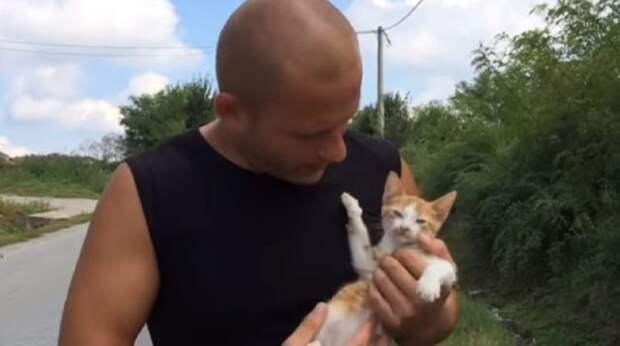 kitten and man