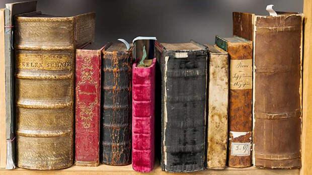 Среди похищенных книг были такие редкости, как первые издания трудов Галилея, Ньютона и Данте.