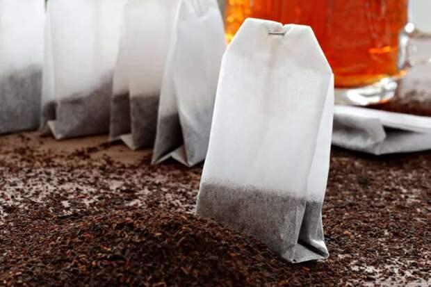 В чайных пакетиках выявлена кишечная палочка