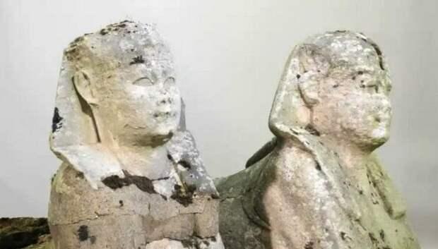 Британская семья разбогатела, случайно обнаружив в своем дворе египетских сфинксов