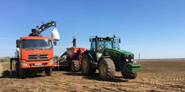 Аграриям выделили 184 млн