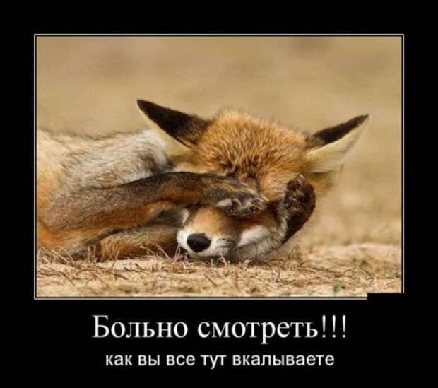 1454520986_1454517908_demotivatory_28