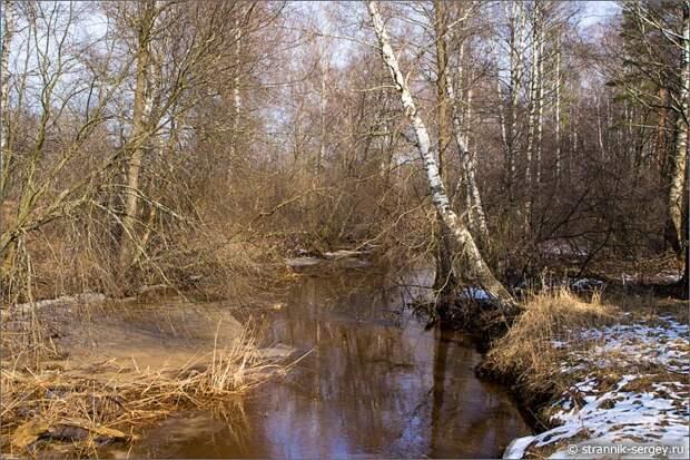 Весенний день весенняя река