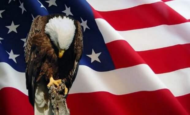 Политолог Рар объяснил внезапную смену курса США по «СП-2»
