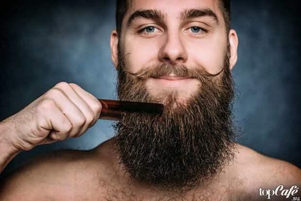 Интересные факты о бороде и усах: погонотрофия