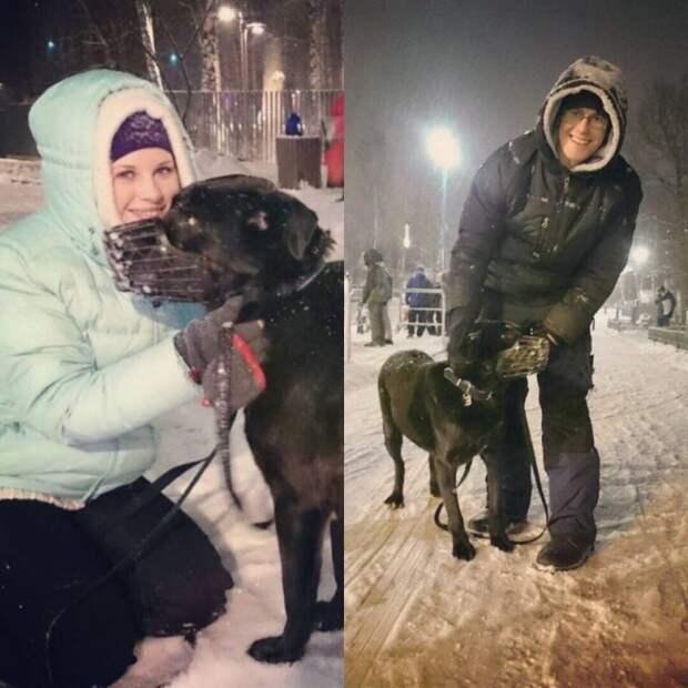 Пара приехала в приют, чтобы забрать одного пса, но судьба решила иначе