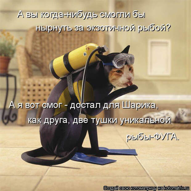kotomatritsa_n_ (700x699, 310Kb)