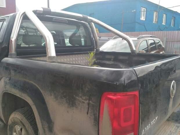 Подумал, что в кузове горшок с растением... авто, автомобильный, автоприкол, автоприколы, одборка, прикол, приколы, юмор