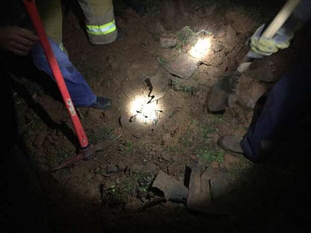 Питбуль угодил в подземную трубу, погнавшись за зверьком истории, опасно, питомцы, помощь животным, собака, собаки, спасение животных