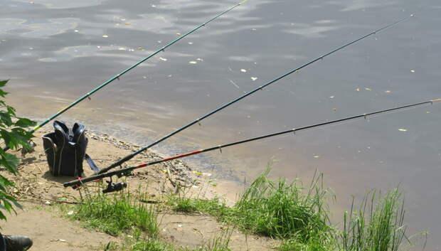 Предпринимателя Мытищ наградили грамотой организатора платной рыбалки