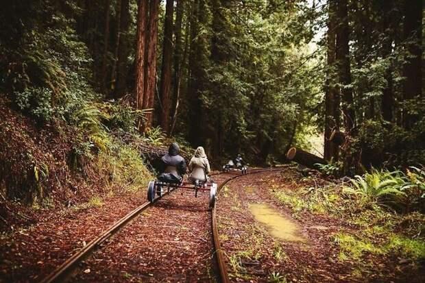 Незабываемое путешествие по Калифорнии на дрезине