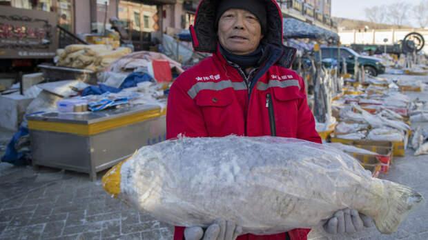 Из-за чего приостановилось поставки российской рыбы в Китай