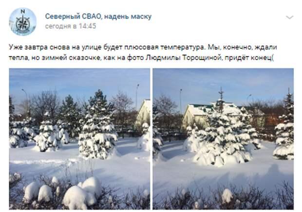 Фотокадр: снежная сказка в Северном перед оттепелью