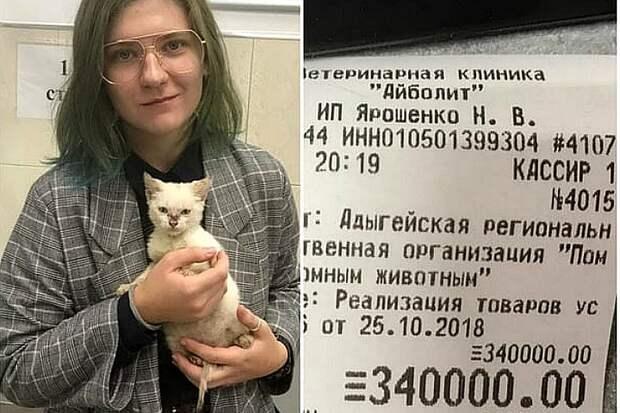 Девушка из Майкопа спасла котенка Фото: соцсети
