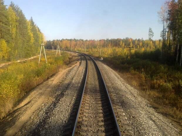 Самолет упал вблизи от железнодорожных путей, между Савватией и Котласом.