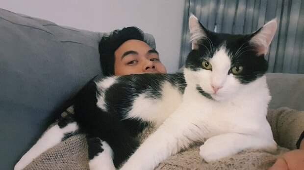 Кошка с парнем