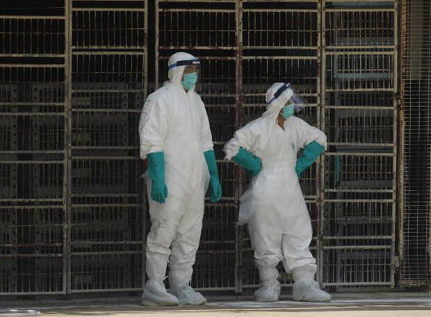 ВКитае зафиксирован случай заражения человека опасным вирусом H10N3