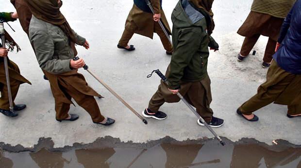 """Осторожно: """"шариатский анклав""""! Подмосковье сделало шаг к ваххабизму"""