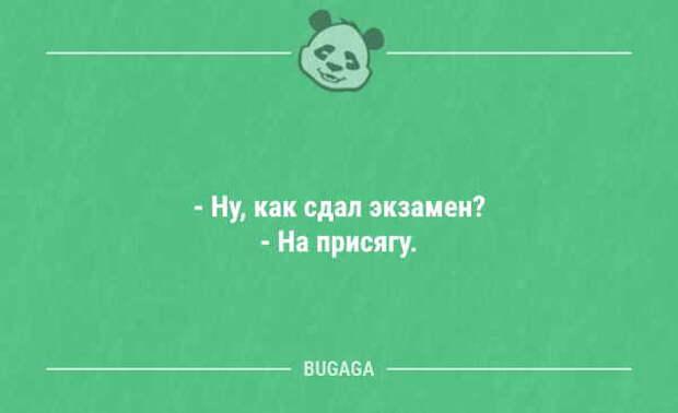 Анекдоты дня (16 шт)