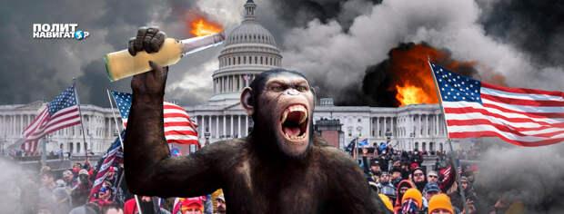 «Отравленный поцелуй майдана». Началась украинизация США