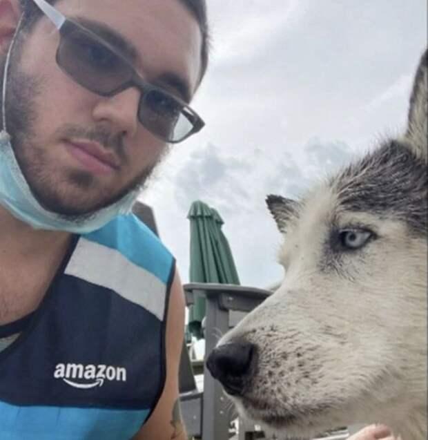 Как водитель службы доставки Amazon нырнул в бассейн, чтобы спасти собаку