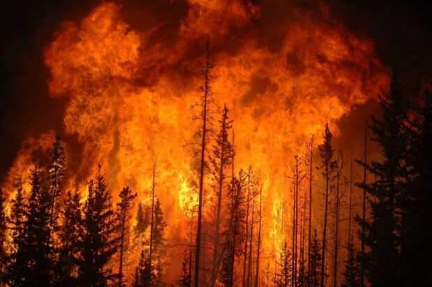 На Западном побережье США продолжаются масштабные пожары