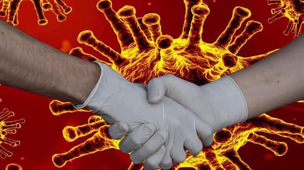 Медики выявили 8465 случаев заражения COVID-19 в России за последние сутки