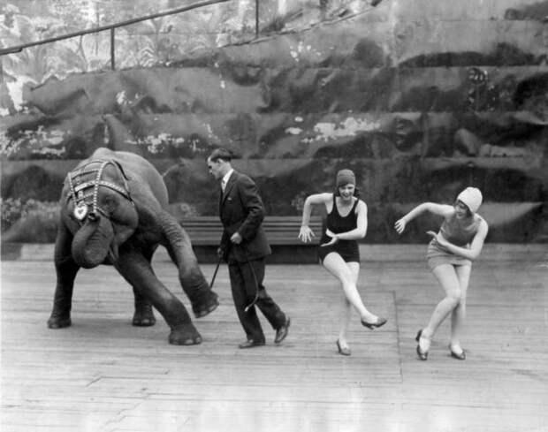 Архивные фотографии и интересные моменты из прошлого