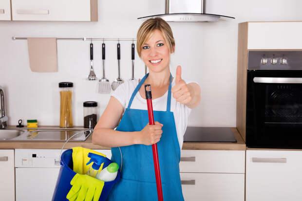 9 самых грязных мест в вашем доме или как часто мыть микроволновку и почему унитаз – не товарищ зубным щеткам