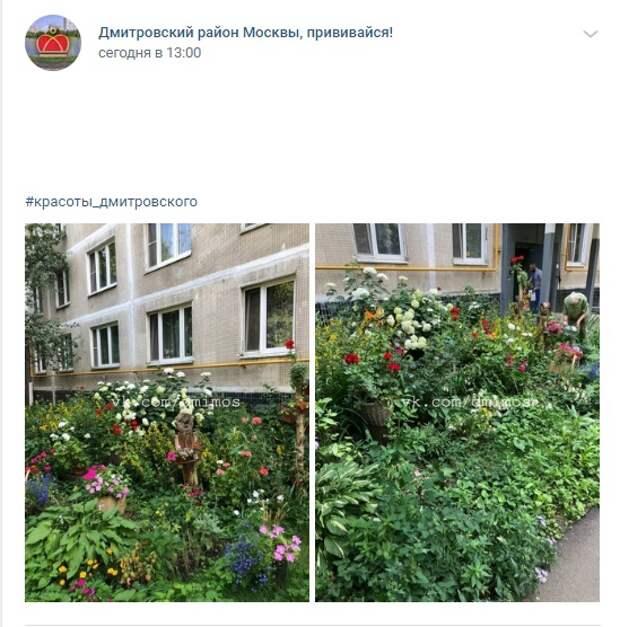 Фото дня: цветочный сквер на Яхромской улице