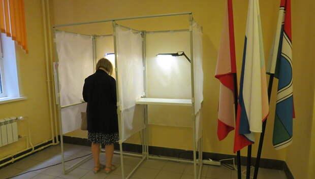 Общественная палата Подмосковья не нашла серьезных нарушений на голосовании по Конституции