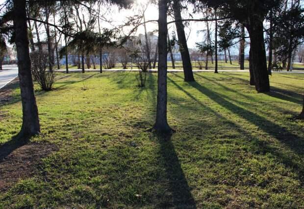 Ясные дни и до +15°С ожидается на текущей неделе в Братске
