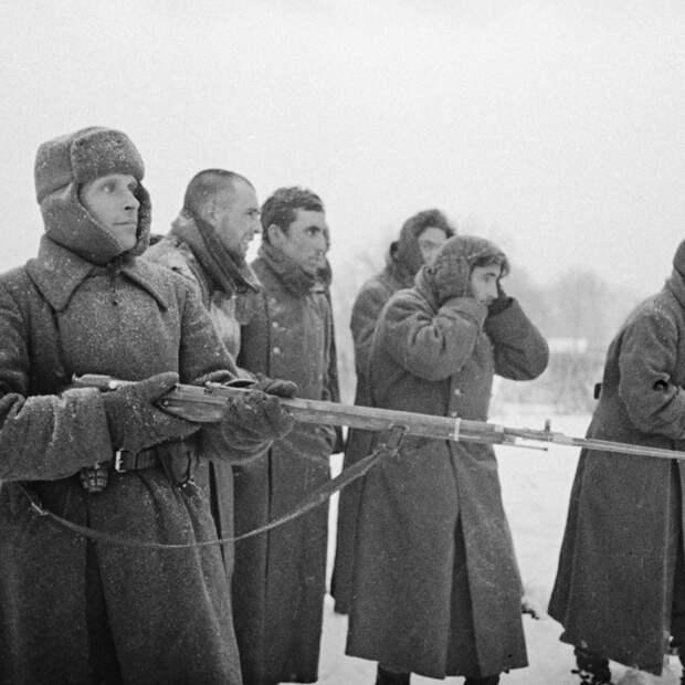 Красноармеец ведет пленных испанской «Голубой дивизии»./lenta.ru