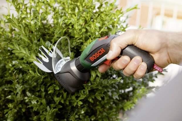 Кусторез подровняет деревья, кустарники и удалит лишние лозы винограда / Фото: asset.conrad.com